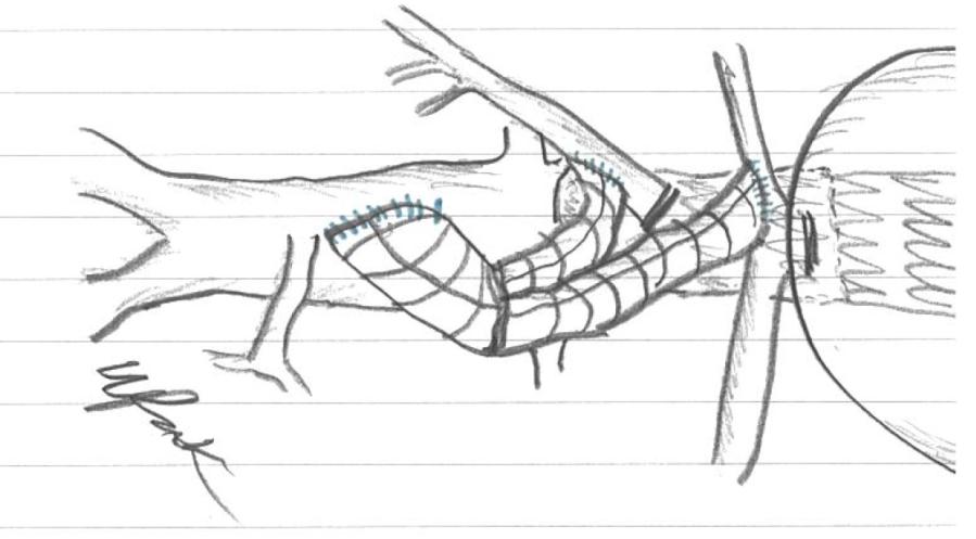 plan sketch.PNG